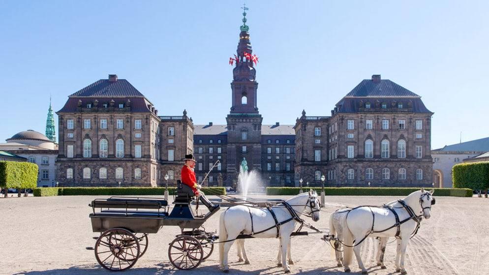 Transport Service Copenhagen